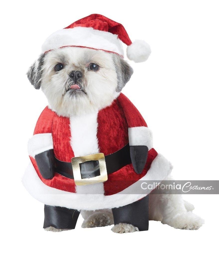 California Costumes Santa Paws Claus Natale Natalizio Vacanze Costume PET20131