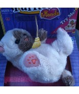 Fur Real Friends Snuggimals SIAMESE Kitten (Grey and White) - $19.99