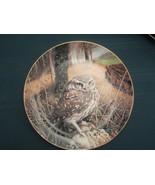 LITTLE OWL collector plate WATCHFUL EYES Trevor Boyer OWLS Danbury Mint - $19.95