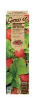 Gardman 65030 Treillis de Jardin 8 x 8 x 26 cm  - $20.99