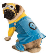 Minion - Pet | Dog Costume , MEDIUM - Free Shipping - £23.88 GBP