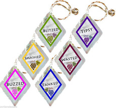 Recycled Frosted Window Glass Wine Charms Set of 6 Buzzed Smashed Blitze... - $12.95