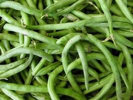 Bean Pole Kentucky Wonder Non GMO Heirloom Garden Vegetable Seeds Sow No GMO USA - $4.94+