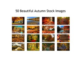 Autumn Scenic Stock Photos 50 High Quality Images 300 DPI Print or Web - $50.00