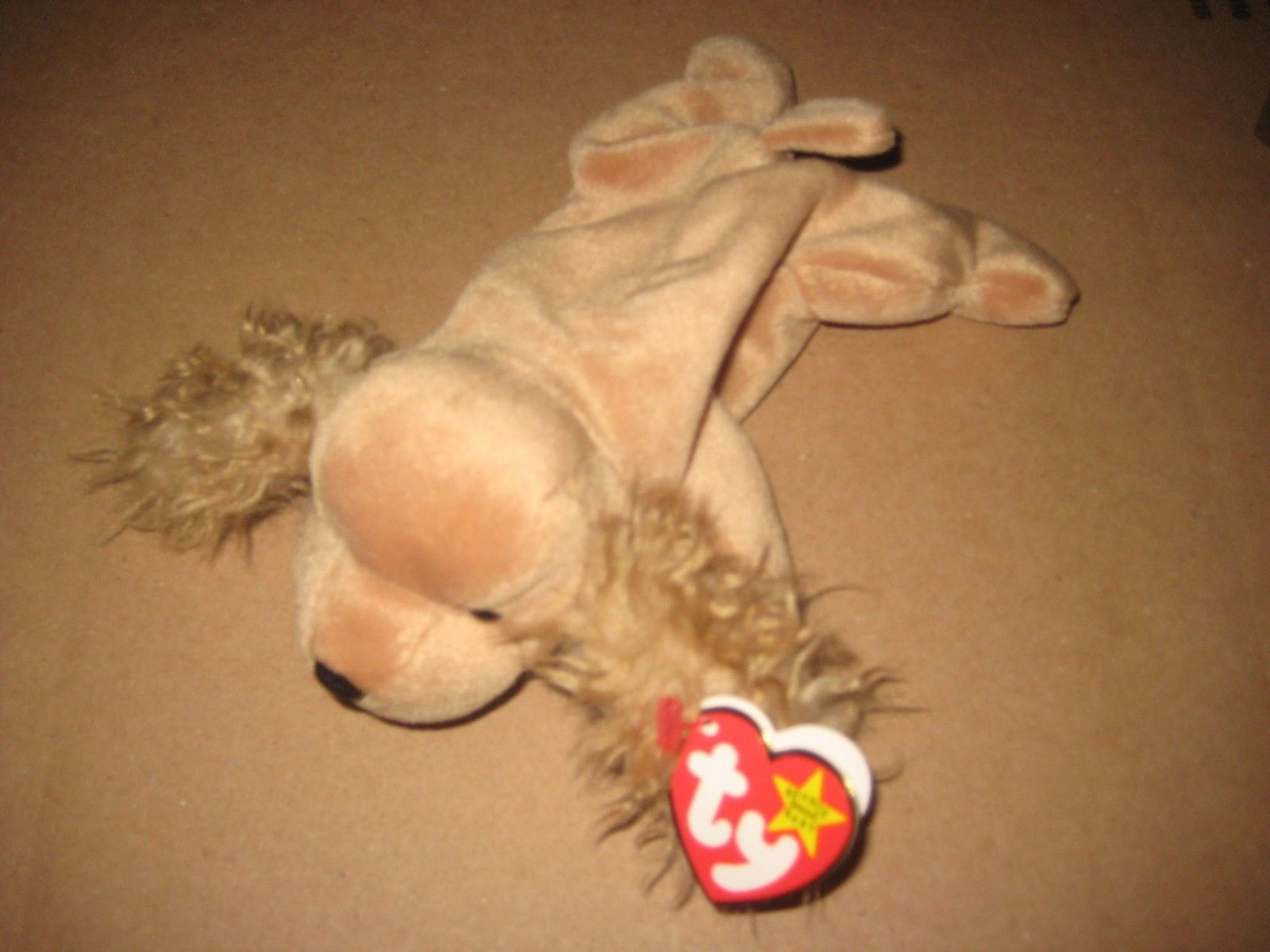 fcfc08fdb88 Ty Beanie Babies Spunky the Cocker Spaniel and 50 similar items. S l1600