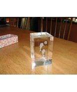 3D Laser Etched Hologram Style Crystal Glass - Dolphins - $6.43