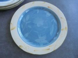 "Pfaltzgraff Sefton Park Dinner Plate 11 1/4"" Wide - $7.43"