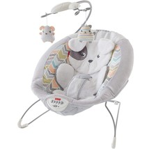 Fisher-Price Sweet Snugapuppy FPP Dreams Deluxe Bouncer - $64.99