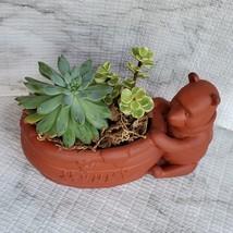 Winnie the Pooh Planter with Succulent Arrangement, Redware Animal Plant Pot image 2