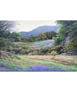 Hill Country Color by Larry Dyke Texas Bluebonnets Landscape Signed Canvas  - $365.31