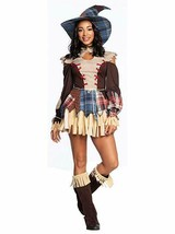Charades Scarecrow Sexy Plaid Dress Hat Adult Womens Halloween Costume 0... - $46.23