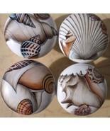 Seashell Cabinet Knobs w/ Sea shell Shell #6 (4) - $21.00