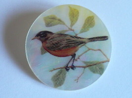 """Beautiful Robin Bird Button on Mother of Pearl MOP Shank Button 1+3/8"""" R... - $11.87"""