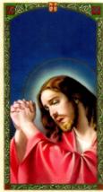 My Daily Prayer Laminated Card - EB609 - Dear God as I Begin This Day Gu... - $2.79
