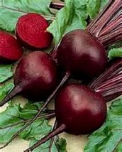 Detriot Dark Red Beet! 100 seeds SEE OUR STORE - MANY RARE SEEDS! COMBINED - $15.48