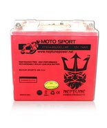 YTX14-BS 12V 14Ah High Performance GEL Motorcycle Battery by Neptune - $44.99