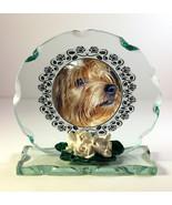 Pet Memorial Plaque Personalised Unusual  Photo  Cat Dog Rabbit Any Anim... - $33.65