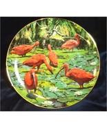 Scarlet Ibis Porcelain Plate Collectible Royal Cornwall Exotic Birds Tro... - $19.99