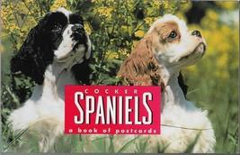Postcard Book-Cocker Spaniels A Book of Postcards-30 Postcards  TOO CUTE! - $7.66