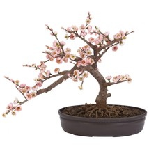Realistic Artificial Pink Japanese Cherry Blossom Bonsai Tree Indoor Hom... - $65.09