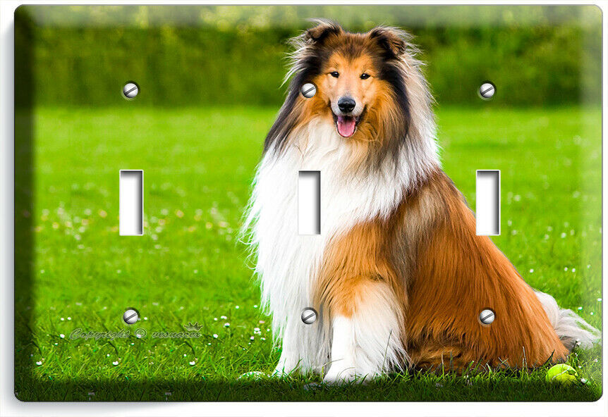 GORGEOUS ROUGH COLLIE DOG 3GANG LIGHT SWITCH WALL PLATE GROOMING PET SALON DECOR