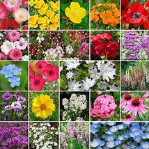 Non GMO Bulk Partial Shade Wildflower Seed Mix 22 Species of Wildflower Seeds (5 - $208.84