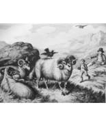 AESOP FABLES Animals Jackdaw, Ram & Eagle - 1811 Original Etching Print - $25.20