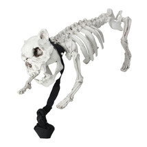 "Northlight 16"" Distressed Cream White Dog Skeleton on Leash Halloween De... - $21.77"