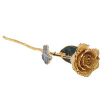 Lacquered White Rose with Gold Trim - $79.99