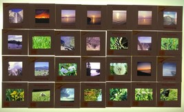 Vintage Lot of 28 Kodachrome Color Photograph Slides Nature Outdoors 1970's - $24.74