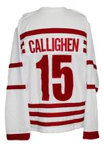Any Name Number Rochester Cardinals Retro Hockey Jersey New White Any Size image 2