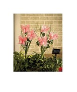 Pink Solar Butterfly Bouquet Garden Stakes Set of 2 with On / Off Switch - $19.98