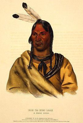 Primary image for Esh-Ta-Hum-Leah, a Sioux chief - 1838 - Native American Portrait Poster