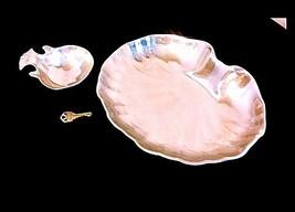 Platter & Candy Dish AB 302 Vintage Seashell Large image 2