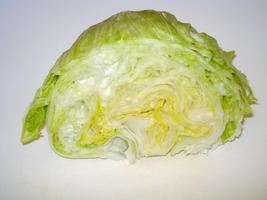Iceberg Head Lettuce Seeds, 800 pcs seeds - $9.00