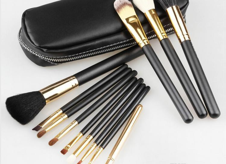 Primary image for M.A.C. Professional 12 Piece Makeup Brush Set With Carrying Case