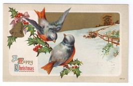 Christmas Blue Birds on Holly Bough Lightly Embossed Litho Vintage Postcard 1910 - $4.99