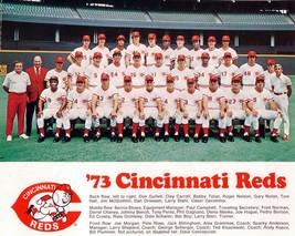 1973 CINCINNATI REDS 8X10 TEAM PHOTO BASEBALL MLB PICTURE - $3.95