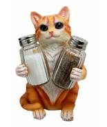Darling Orange Tabby Kitty Cat Hugging Spice Salt Pepper Shakers #GFT02 - $46.17