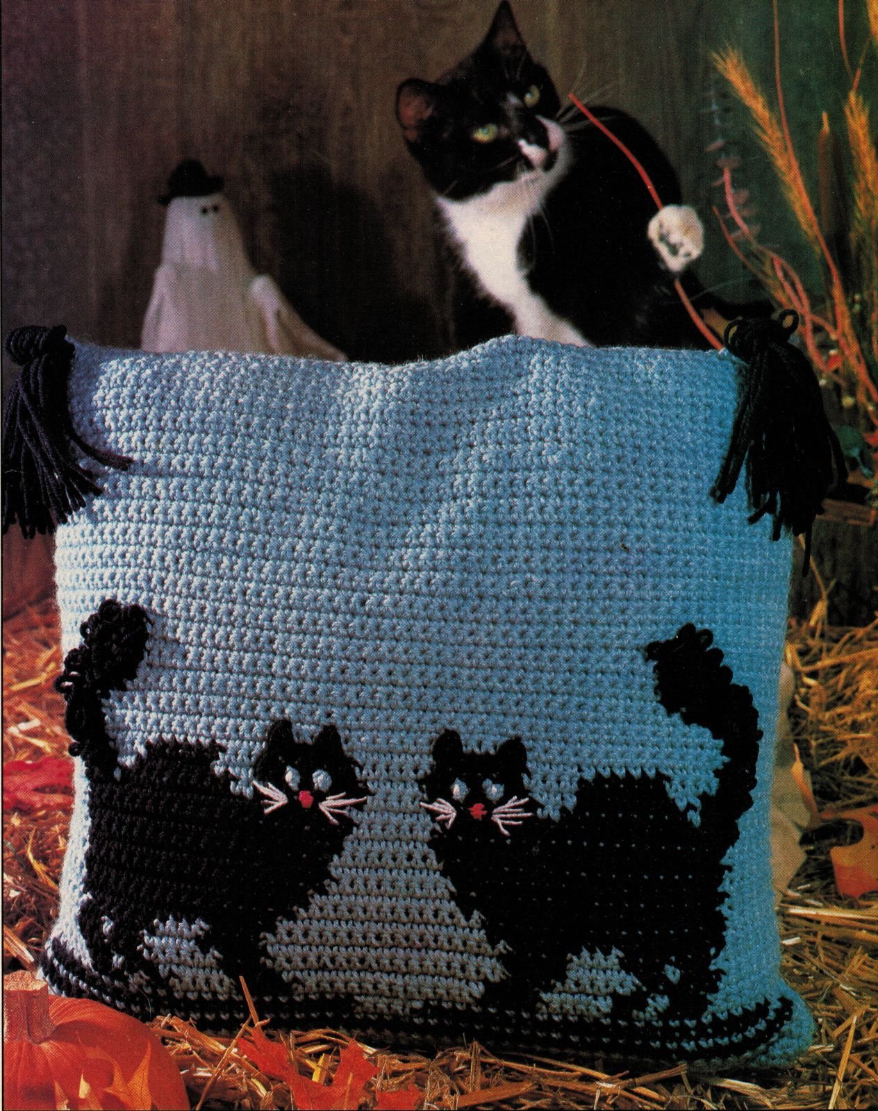 Primary image for 2 Black Cats Pillow Kitty Afghan Kool Kat Pilgrims Rug Crochet Pineapple Pattern