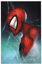 Jamie Tyndall Zenescope Artist Marvel / Comic Art Print ~ Amazing Spider-Man - $25.73