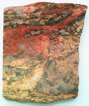 Leopard Skin Jasper 3 Gemstone Slab Cabbing Rough - $4.60