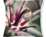 Cactus crown vintage pillow thumb155 crop