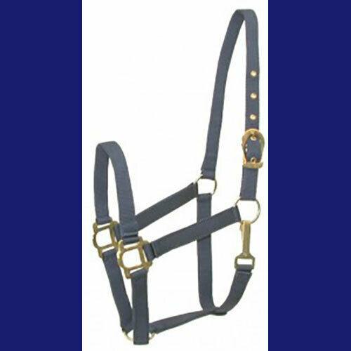 Pony Nylon Halter Classic NEW!  Navy