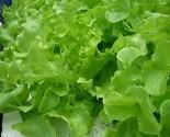 S l300 thumb155 crop