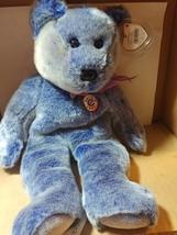TY Perwinkle Beanie Buddy 2001 Bear w/Tag  - $8.00