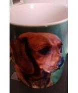 Dachshund Dog Puppy Canine  Coffee Mug Tea Cup  12 ounces - $8.15