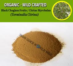 POWDER Black Chuglam Fruits Citrine Myrobalan Terminalia Citrina Organic... - $7.85+