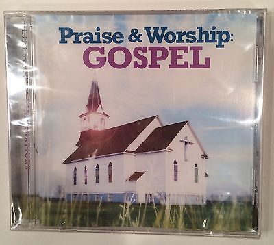 "Primary image for ""Praise & Worship"" Gospel CD Lifescapes (2013) Brand New Sealed - Fast Shipping!"