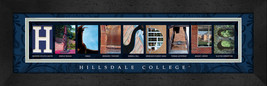 Hillsdale College Officially Licensed Framed Campus Letter Art - $39.95